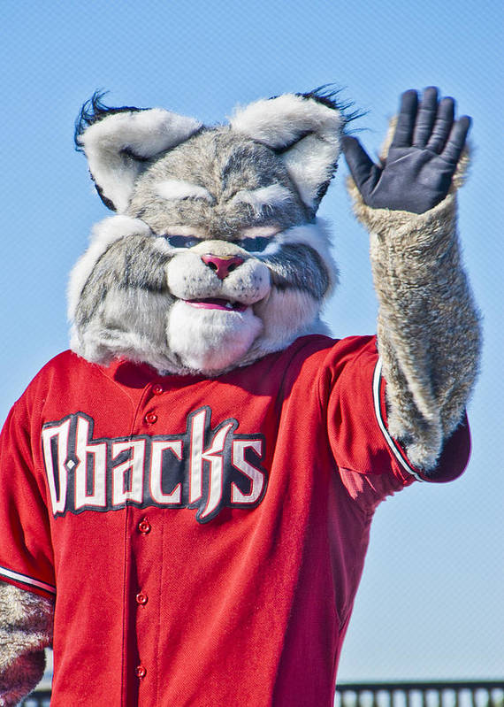 Arizona Diamondbacks Mascot Baxter Poster featuring the photograph Diamondbacks Mascot Baxter by Jon Berghoff