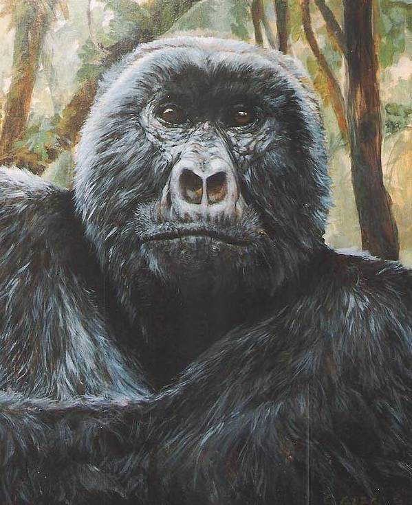Gorilla Poster featuring the painting Digit by Steve Greco