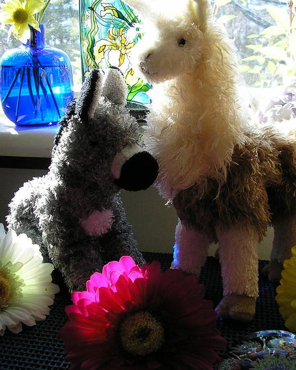 Stuffed Animals Poster featuring the photograph Donkey Joti And Dali Llama by Christina Gardner