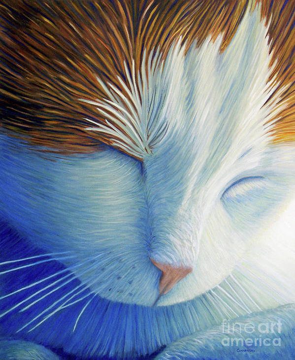 Cat Poster featuring the painting Dream Within A Dream by Brian Commerford