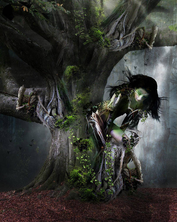 Tree Poster featuring the digital art Dryad's Dance by Mary Hood