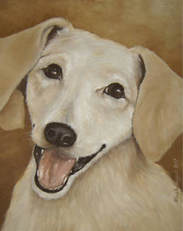 Oils Poster featuring the painting Dusty by Winifred Ann Weishampel