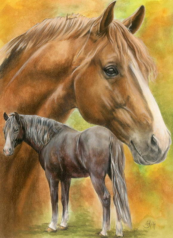 Horse Poster featuring the mixed media Dutch Warmblood by Barbara Keith
