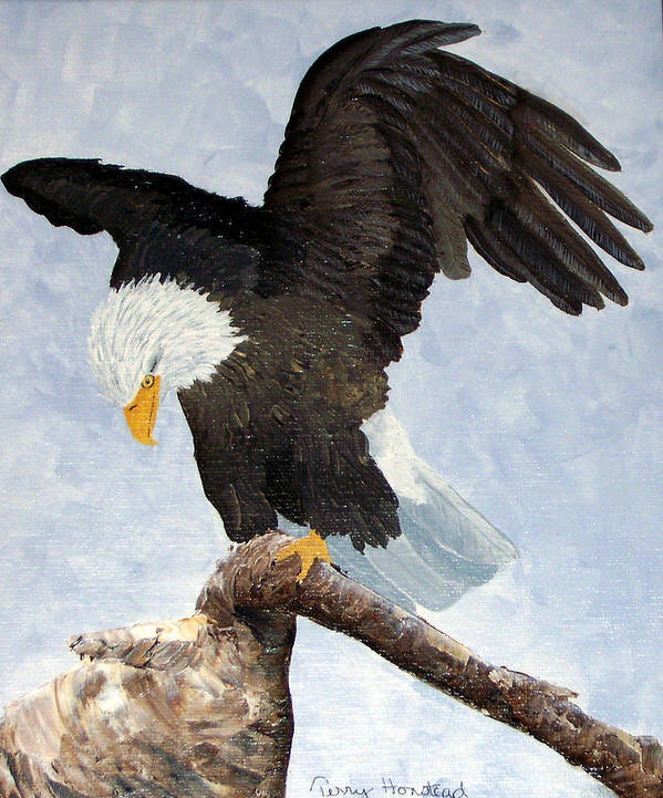 Eagle Acrylic Bird Nature Bird Patriotic Painting Poster featuring the painting Eagle Landing by Terry Honstead