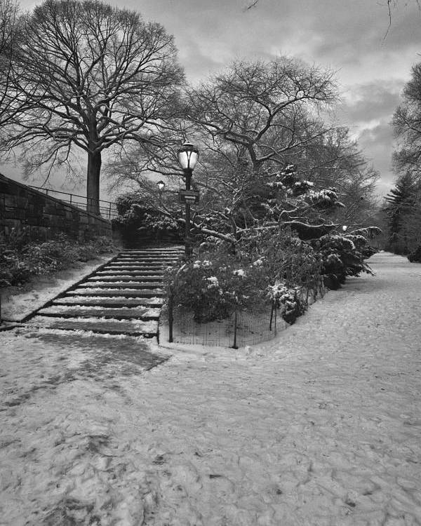 Snow Poster featuring the photograph Early Evening Nyc Central Park by Robert Ullmann