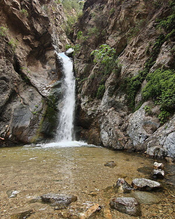 Eaton Canyon Waterfall Poster featuring the photograph Eaton Canyon Waterfall by Viktor Savchenko