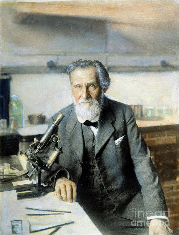 20th Century Poster featuring the photograph Elie Metchnikoff (1845-1916) by Granger