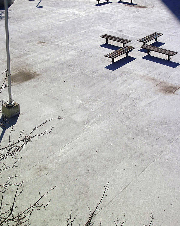 Black And White Photography Poster featuring the photograph Empty Benches by Wayne Denmark