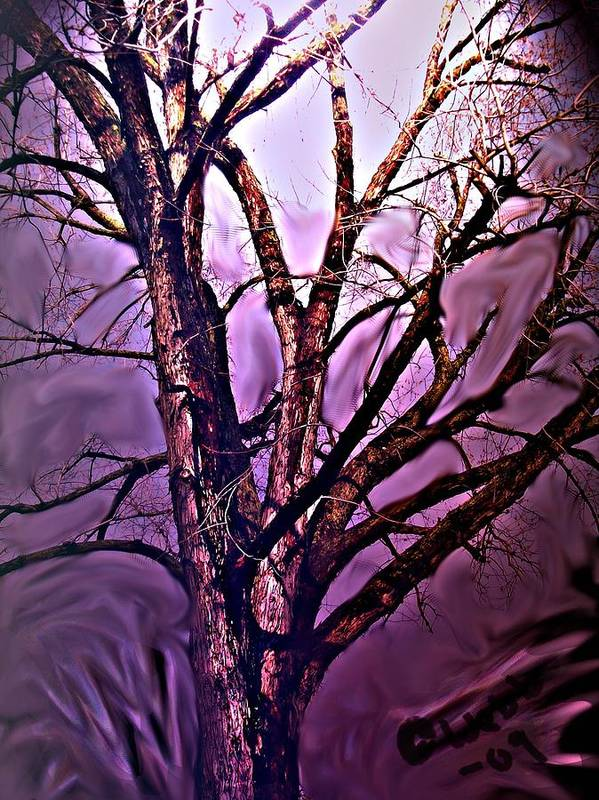 Woods Poster featuring the digital art Everlasting 2 by Crystal Webb
