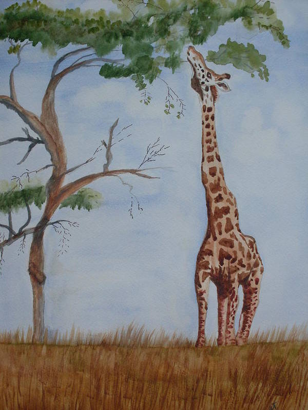 Landscape Giraffe Africa Tree Wildlife Poster featuring the painting Evolution's Early Stretch by Warren Thompson