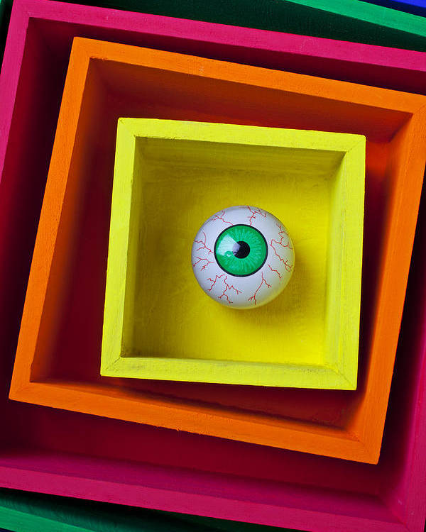 Eye Poster featuring the photograph Eye In The Box by Garry Gay