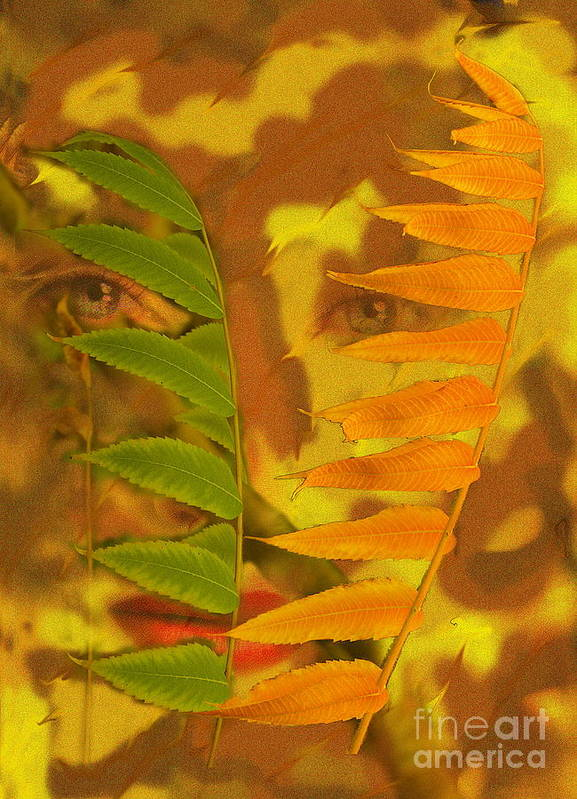 Nature Poster featuring the photograph Face Of Fall by Viktor Savchenko