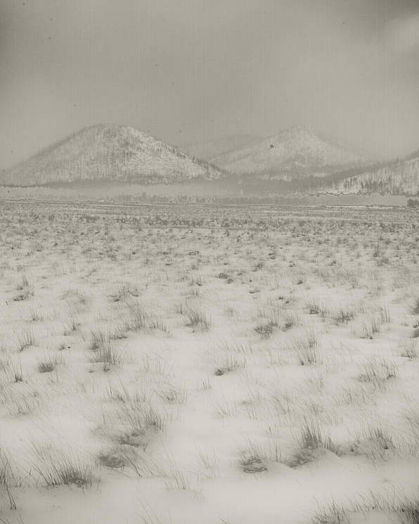 Winter Poster featuring the photograph Faded Storm by Scott Sawyer