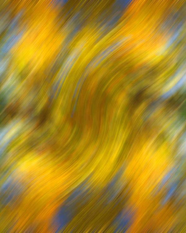 Leaves Poster featuring the photograph Fall Colors Abstract by Bob Coates