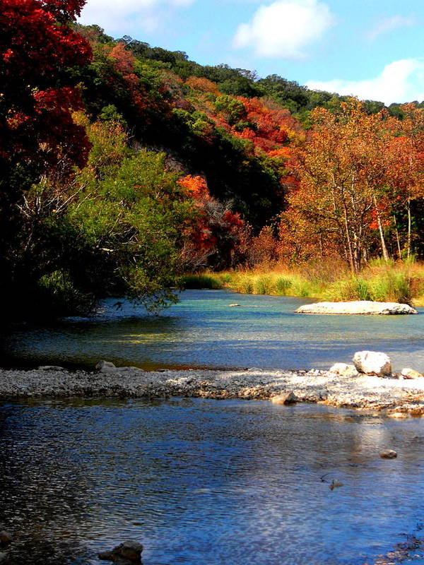 Fall Poster featuring the photograph Fall Colors by Stacey Robinson