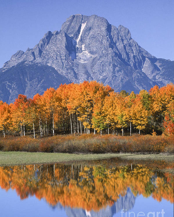 Grand Tetons Poster featuring the photograph Fall Reflection At Oxbow Bend by Sandra Bronstein
