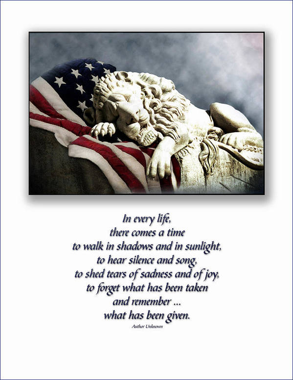 Patriot Flag American Lion Poster featuring the photograph Fallen Patriot by Carolyn Staut