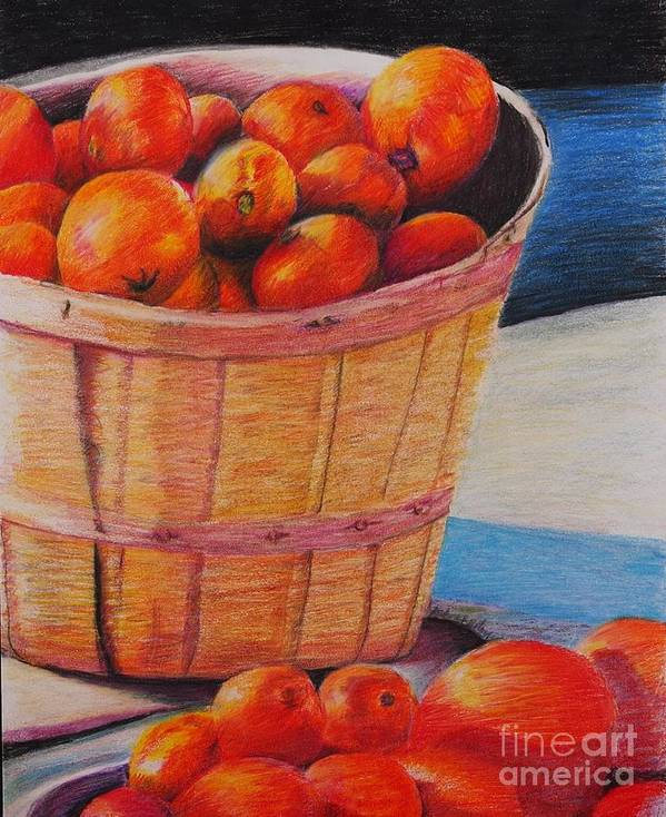 Produce In A Basket Poster featuring the drawing Farmers Market Produce by Nadine Rippelmeyer
