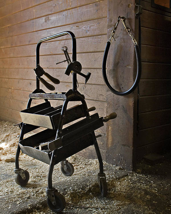 Horse Poster featuring the photograph Farriers Tools by Jack Goldberg