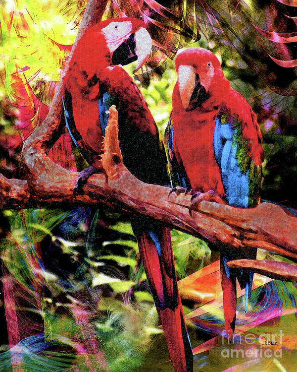 Feathered Duet Poster featuring the digital art Feathered Duet by John Beck