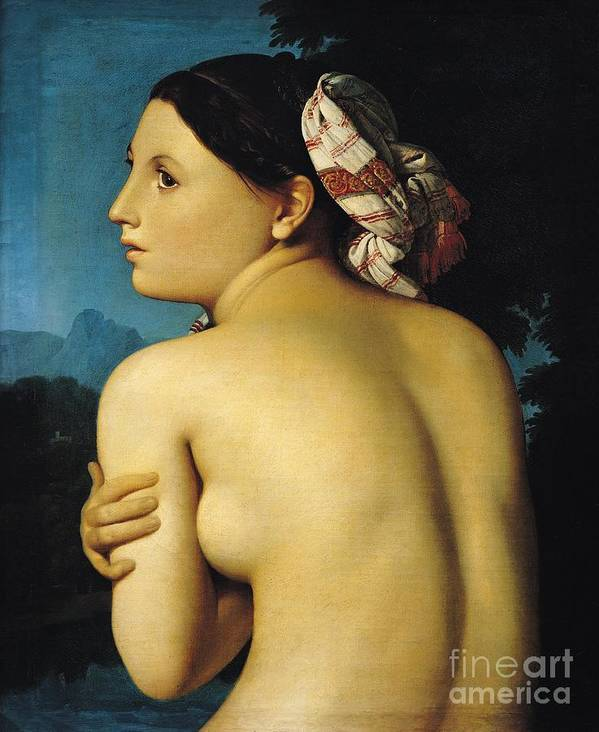Female Poster featuring the painting Female Nude by Ingres