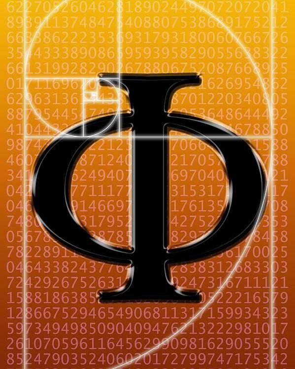 Fibonacci Poster featuring the photograph Fibonacci Spiral And Phi, Artwork by Seymour