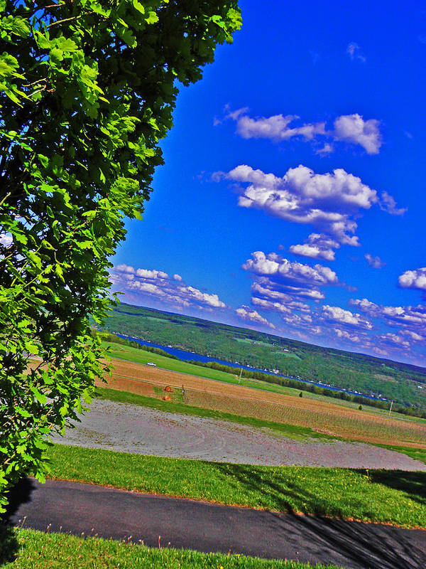 Hillside Poster featuring the photograph Finger Lakes Country by Elizabeth Hoskinson
