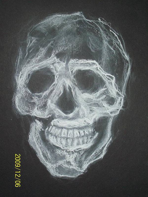 Skulls Poster featuring the drawing First Skull Work by Nancy Caccioppo