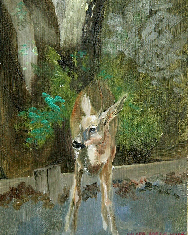 Deer Poster featuring the painting First Young Buck Pad by Eileen Hale