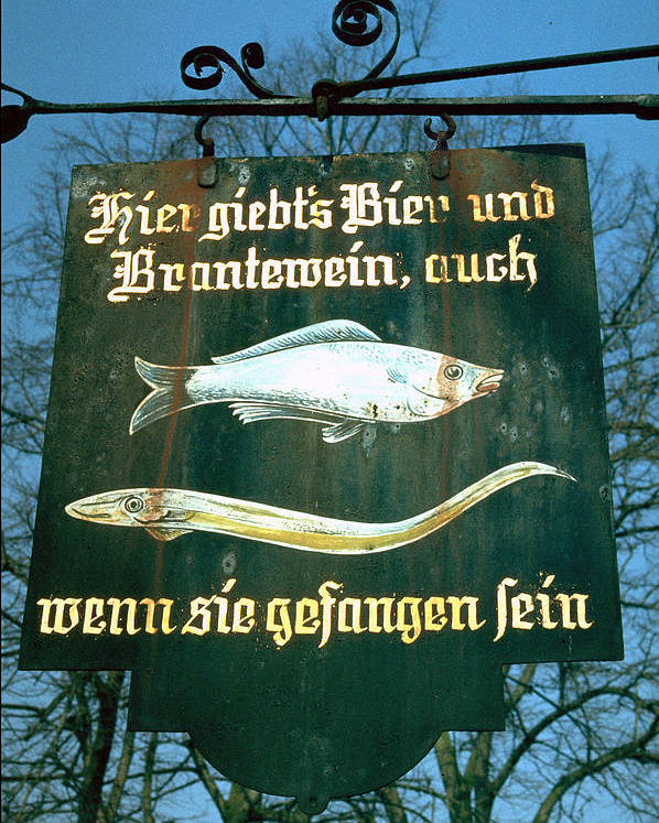 Store Sign Poster featuring the photograph Fish by Flavia Westerwelle