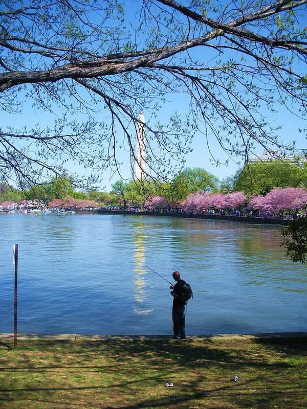 People Poster featuring the photograph Fisherman In Dc by Jeanette Oberholtzer