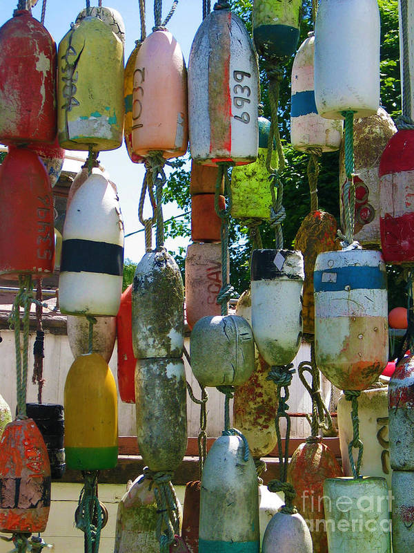Floats Poster featuring the photograph Floats And Buoys II by Mg Blackstock