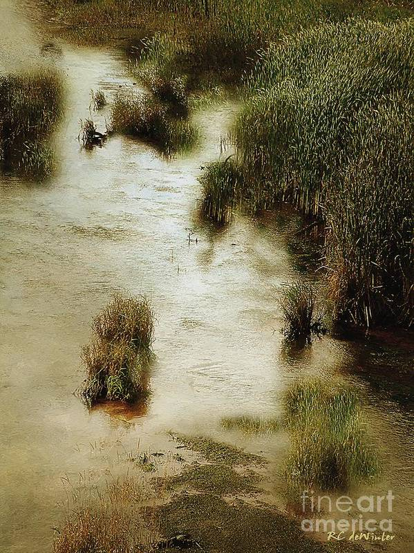 Autumn Poster featuring the painting Flood Tide In The Salt Marsh by RC DeWinter