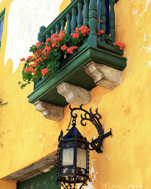 Flores Rojas En Cartagena Poster featuring the photograph Flores Rojas En Cartagena by John Rizzuto
