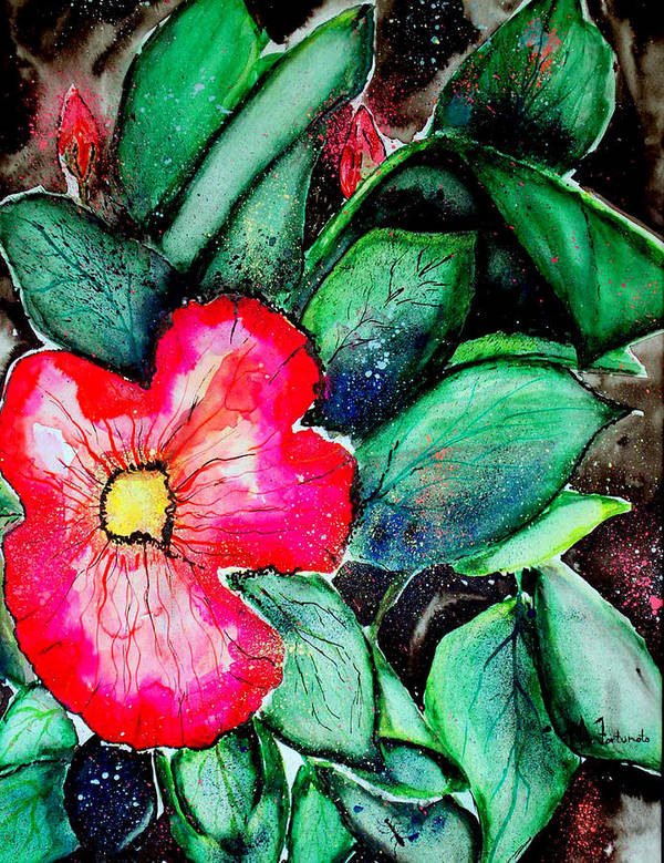 Exotic Poster featuring the photograph Florida Flower by Margaret Fortunato