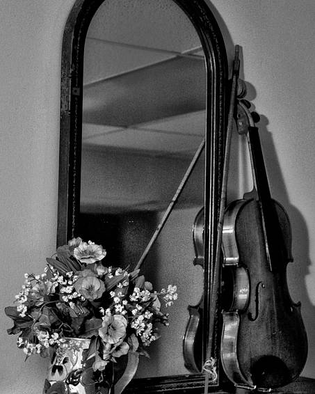 Flowers Poster featuring the photograph Flowers And Violin In Black And White by Bill Cannon