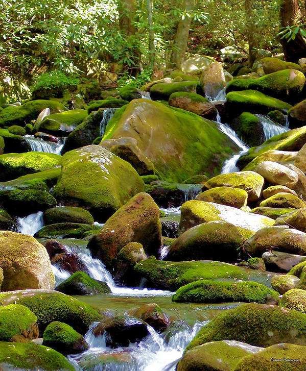 Nature Poster featuring the photograph Flowing Mountain Stream by Johann Todesengel