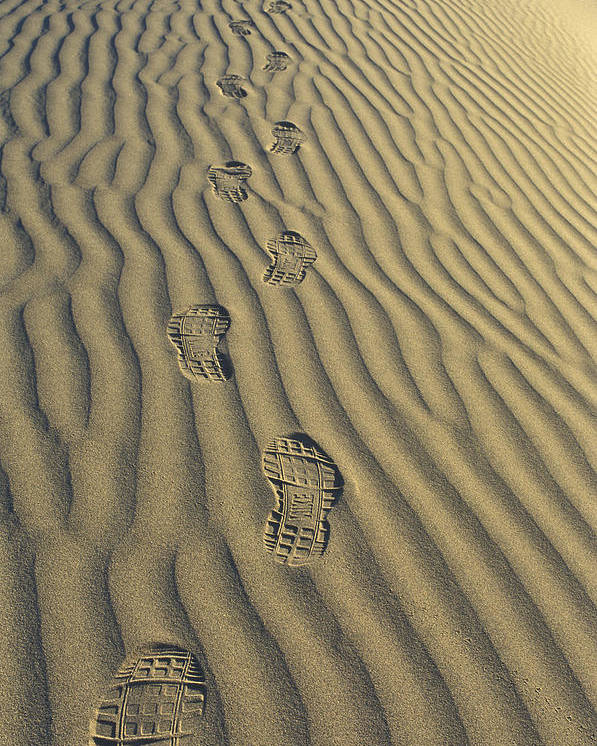 Footprints Poster featuring the photograph Footprints In The Sand by Joe Palermo