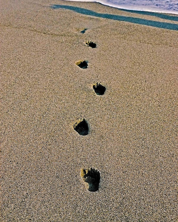 Pacific Poster featuring the photograph Footprints In The Sand ... by Juergen Weiss