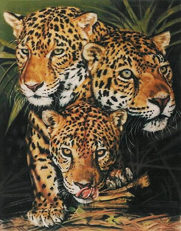 Jaguar Poster featuring the pastel Forest Jewels by Barbara Keith