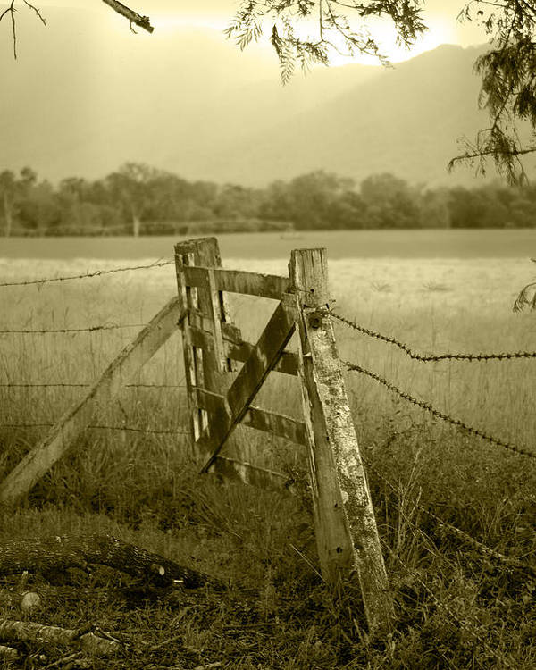 Gate Poster featuring the photograph Forgotten Fields by Holly Kempe