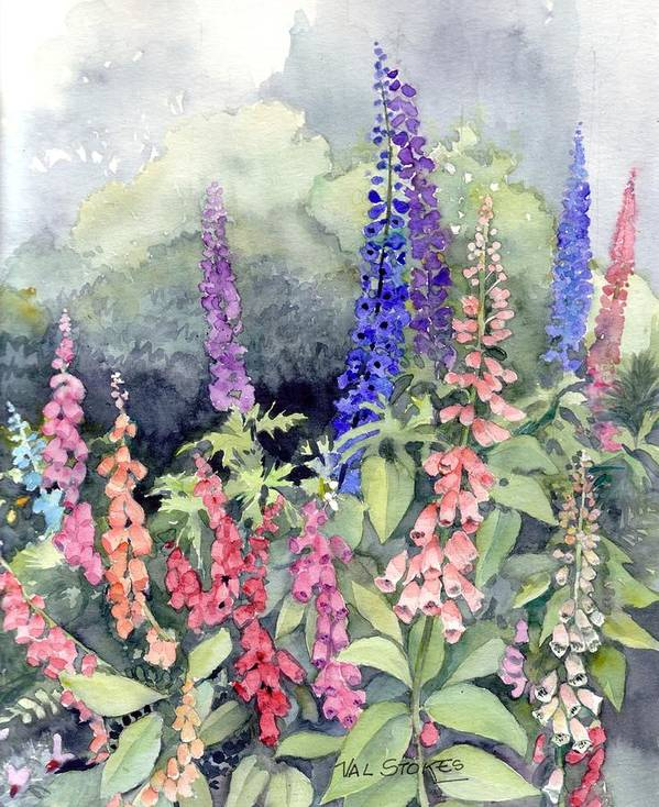 Poster featuring the painting Foxgloves by Val Stokes