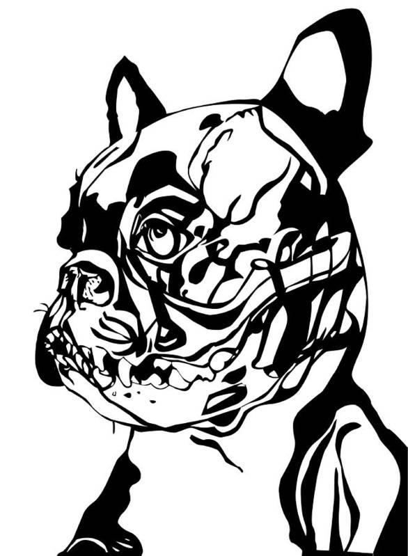 French Bulldog Anatomy Poster by Dragana Gajic