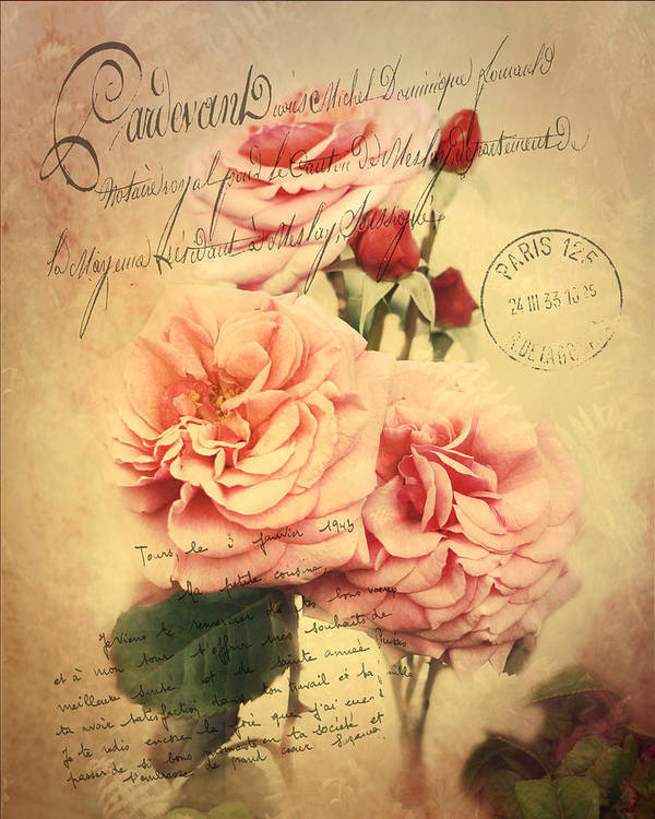Roses Poster featuring the photograph French Rose Bouquet by TnBackroadsPhotos