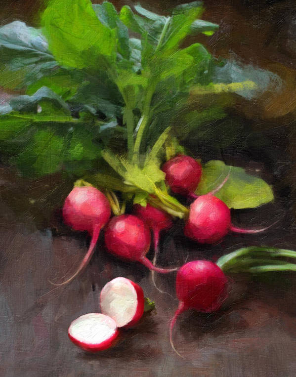 Radishes Poster featuring the painting Fresh Radishes by Robert Papp