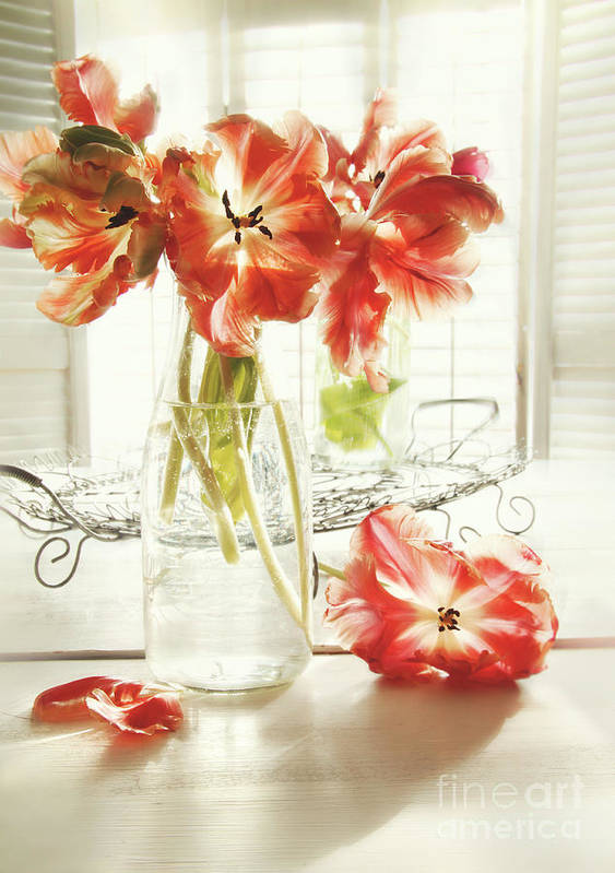 Background Poster featuring the photograph Fresh Spring Tulips In Old Milk Bottle by Sandra Cunningham