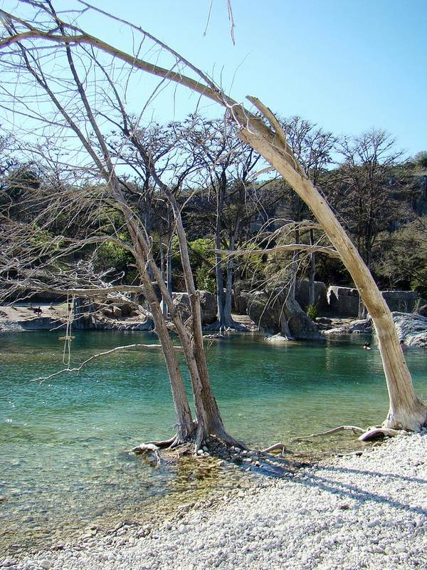 Frio River Poster featuring the photograph Frio One by Ana Villaronga
