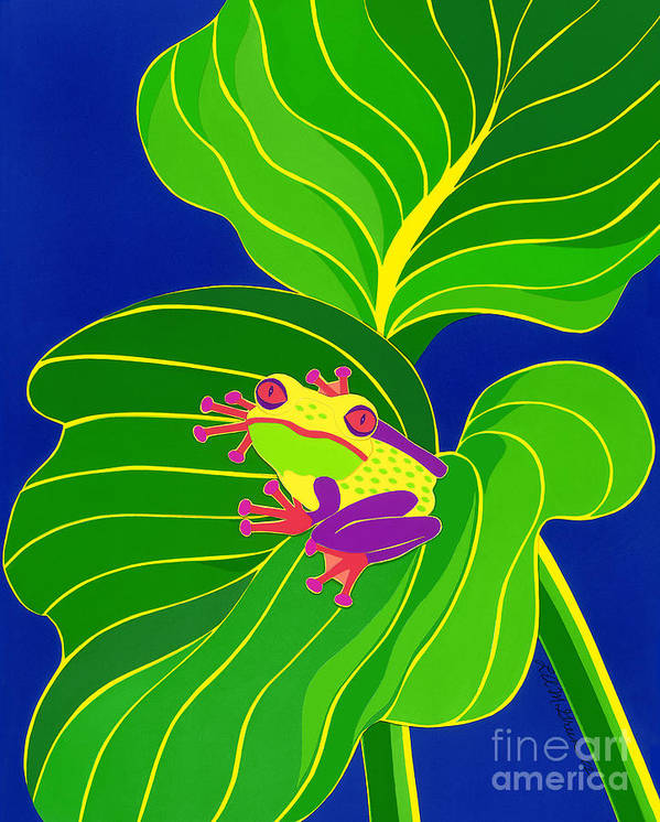 Nature Poster featuring the drawing Frog On Leaf by Lucyna A M Green
