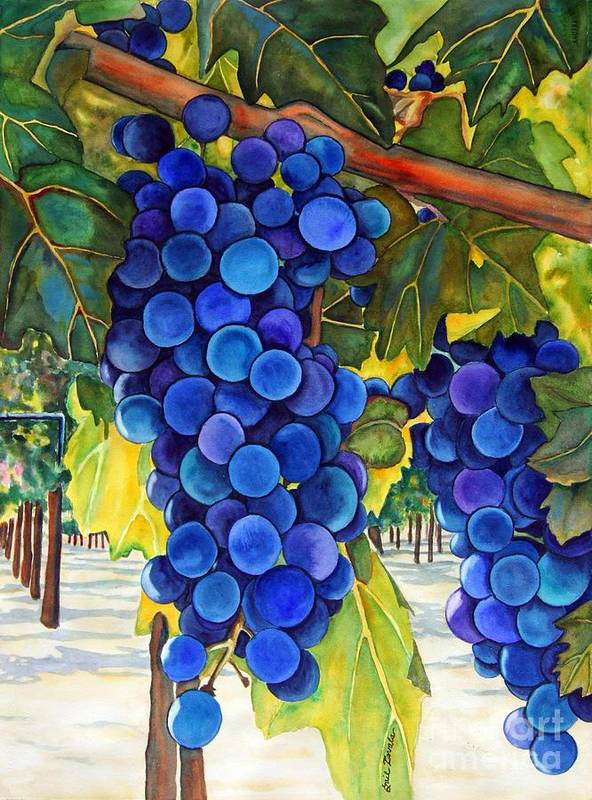 Grapes Poster featuring the painting From The Vineyard by Gail Zavala