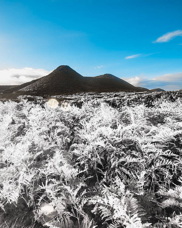 Highlands Poster featuring the photograph Frosted Over Hinterland by Jorgo Photography - Wall Art Gallery